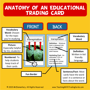 Anatomy of an Educational Trading Card