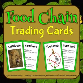 These Food Chain Trading Cards are a fun way for students to learn about the food chain.